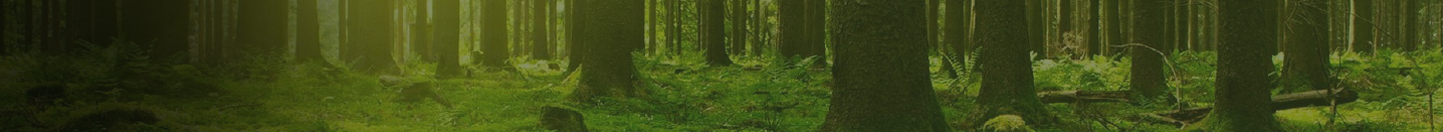 Environment and Health banner